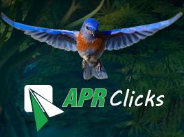 apr-clicks